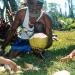 Tribu de Comagna