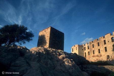 Vestiges du château du Prince Pierre Bonaparte