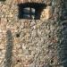 La tour de sel sur le port de Calvi