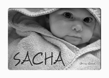 PREMIERES SEANCES AVEC SACHA