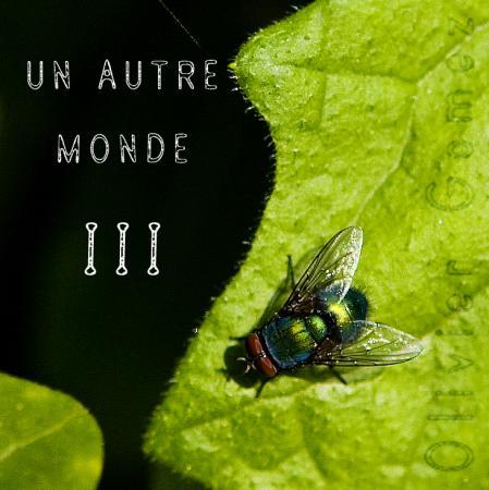 UN AUTRE MONDE III