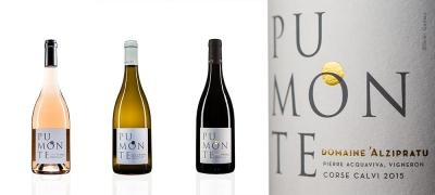 olivier gomez,photographe corse,alzipratu,pumonte,bouteilles,vin,balagne,corse