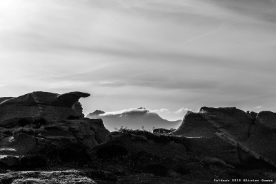 http://www.photographe-corse.fr/full/index.php?ID=182