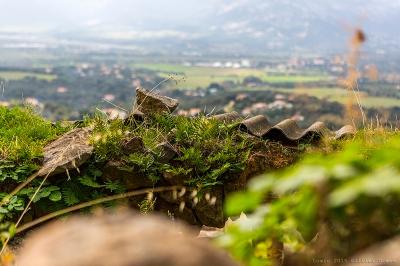 olivier gomez,photographe corse,village corse,lumiu