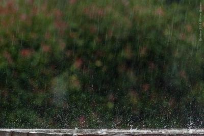 olivier gomez,photographe corse,pluie