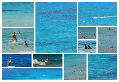 olivier gomez,photographe corse,banque images,phototheque,oti,ile rousse balagne,littoral balanin,corse