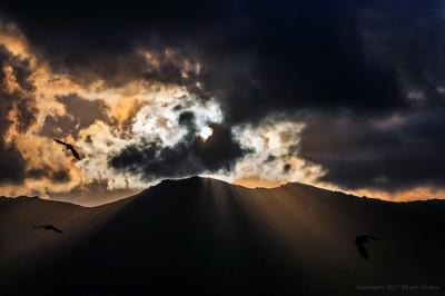 olivier gomez,photographe corse,corbeau,nuages,soleil