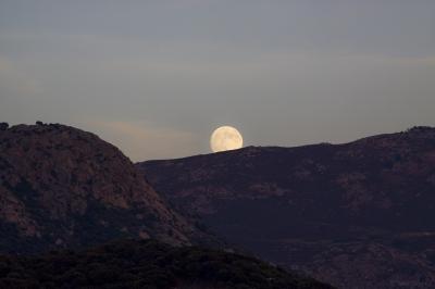 Lever de lune Lumio.jpg