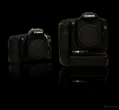 EOS50&20D.jpg