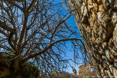 olivier gomez photographe corse oci village abandonne