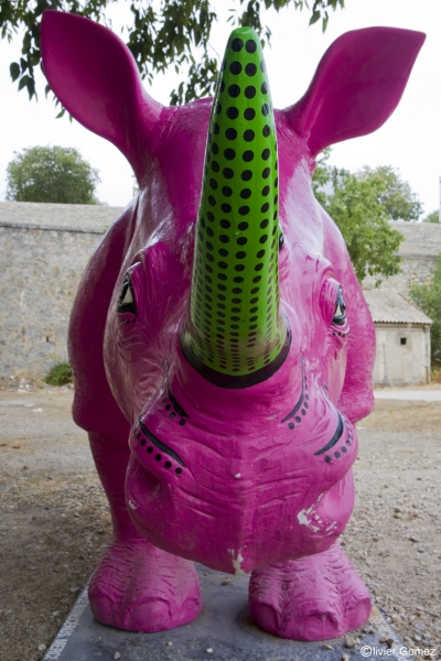 Rhino féroce .jpg