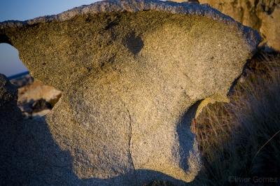 olivier gomez,photographe corse,punta di spano